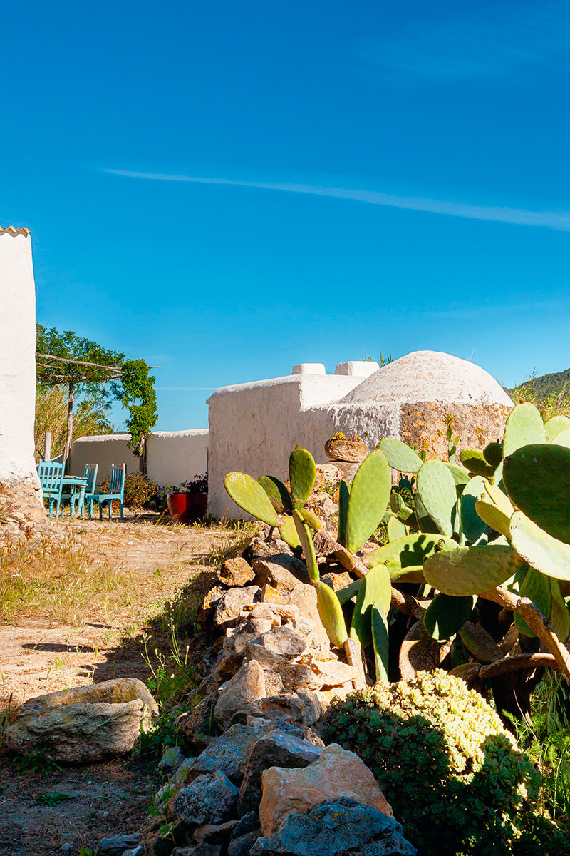 casa-ibicenca-exterior-cactus