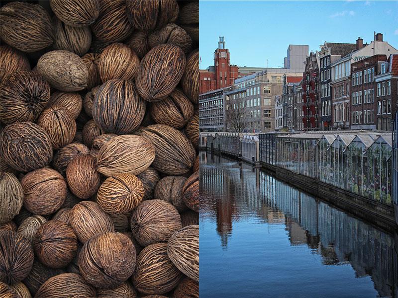 Mercado-de-las-flores-Bloemenmarkt-Travel-Photographers-Magazine-canal