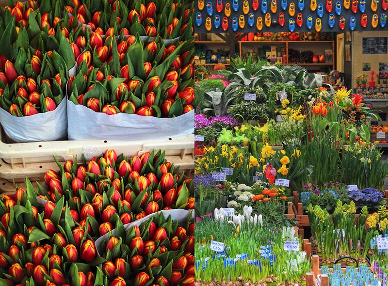 Mercado-de-las-flores-Bloemenmarkt-flowers-Travel-Photographers-Magazine-canal
